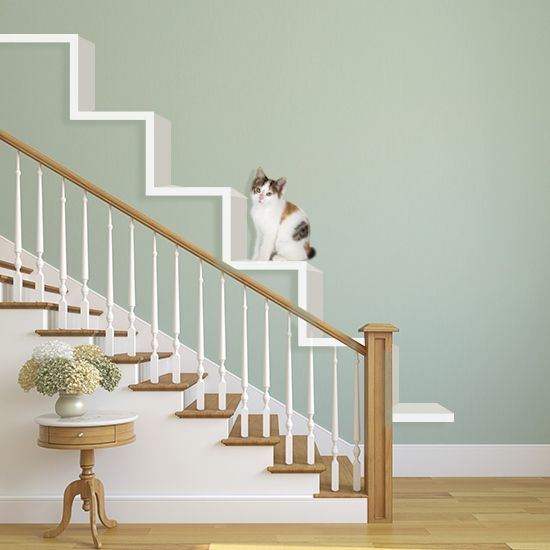 Try These 8 Cool Ideas To Build Wall Shelves For Cats Right Meow Cat Steps Cat Stairs Cat Shelves