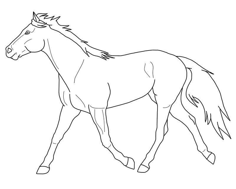 Kleurplaten Paarden Fries.Paarden Kleurplaat Animals Horses Paarden Kleurplaten