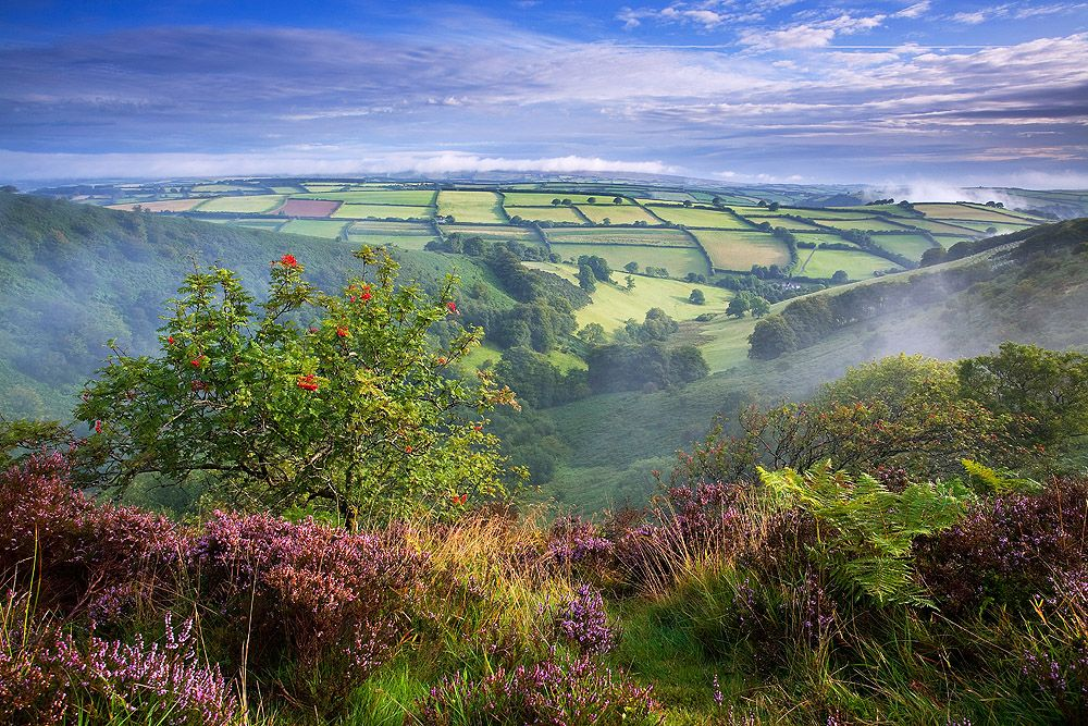 The English Rural Landscape Damaged By New Landowners Landscape Beautiful Landscapes The Great Outdoors