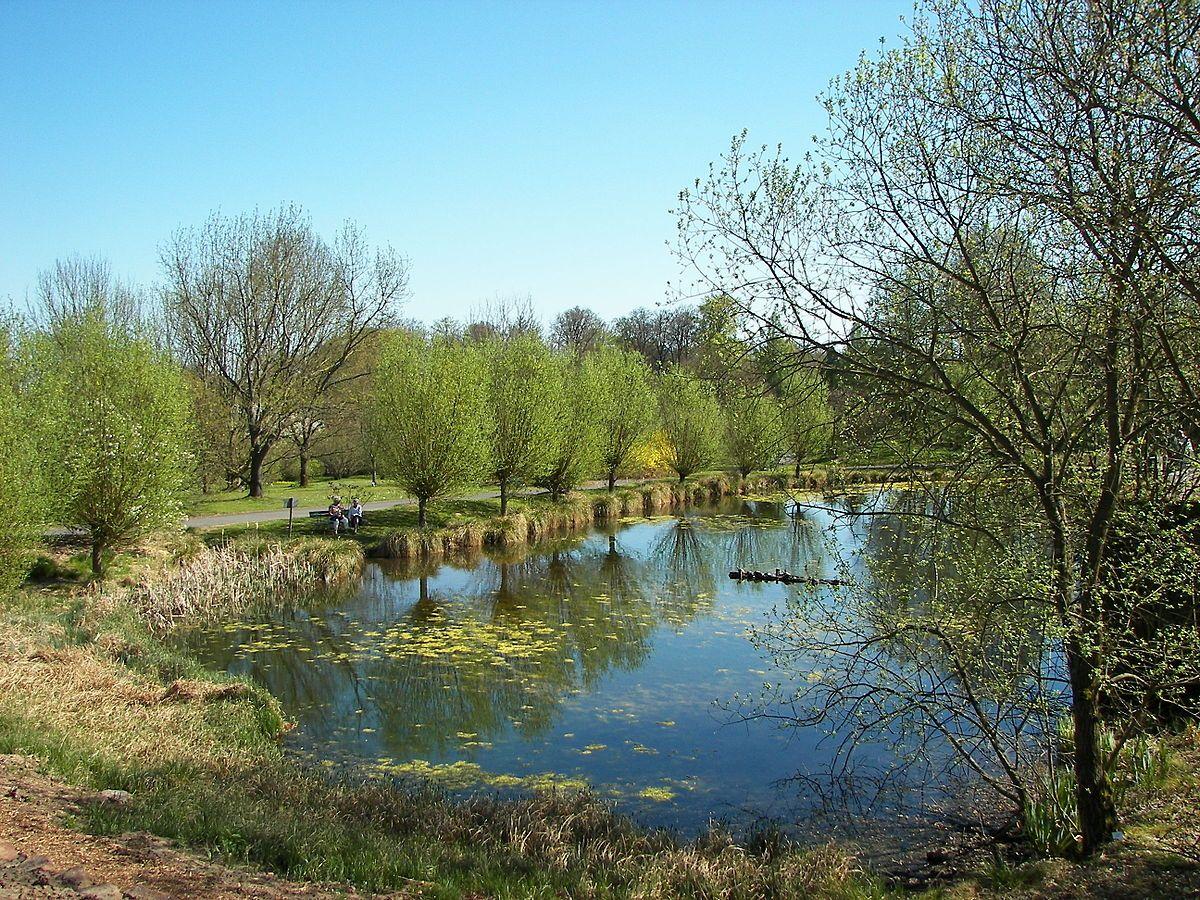 Botanischer Garten Marburg Wikipedia Gartenideen Wohnzimmer Wohnungeinrichten Innereoberschenkel Hausideen Dekoherbst Hausbauen Hausdeko Outdoor Water