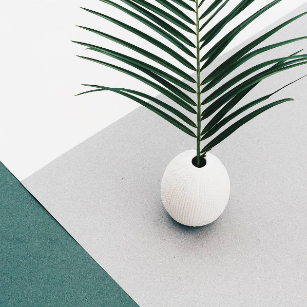 Those greens! Palm photo by OAKgallery