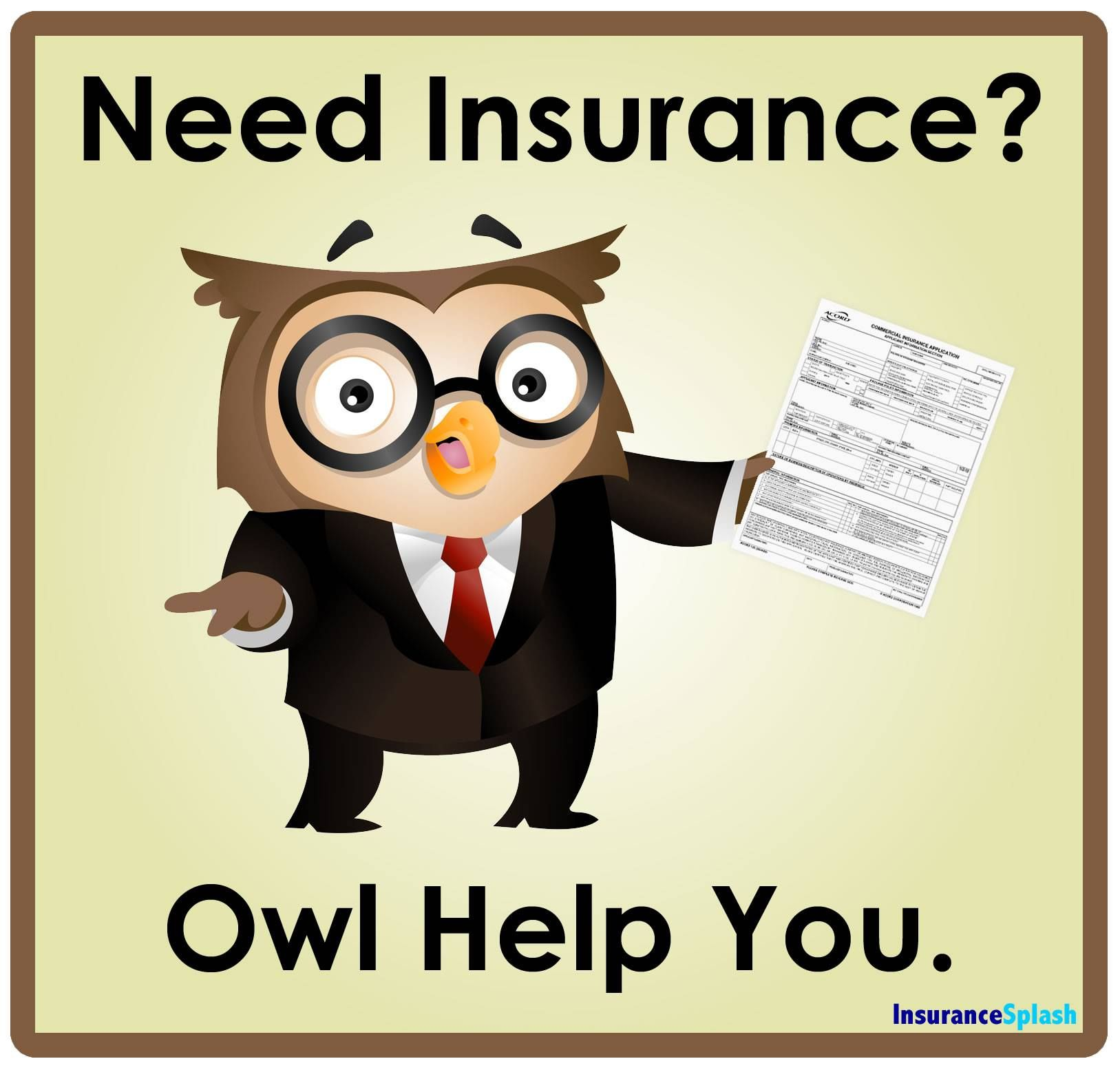 Whoooo Needs Insurance Home Insurance Quotes Life Insurance