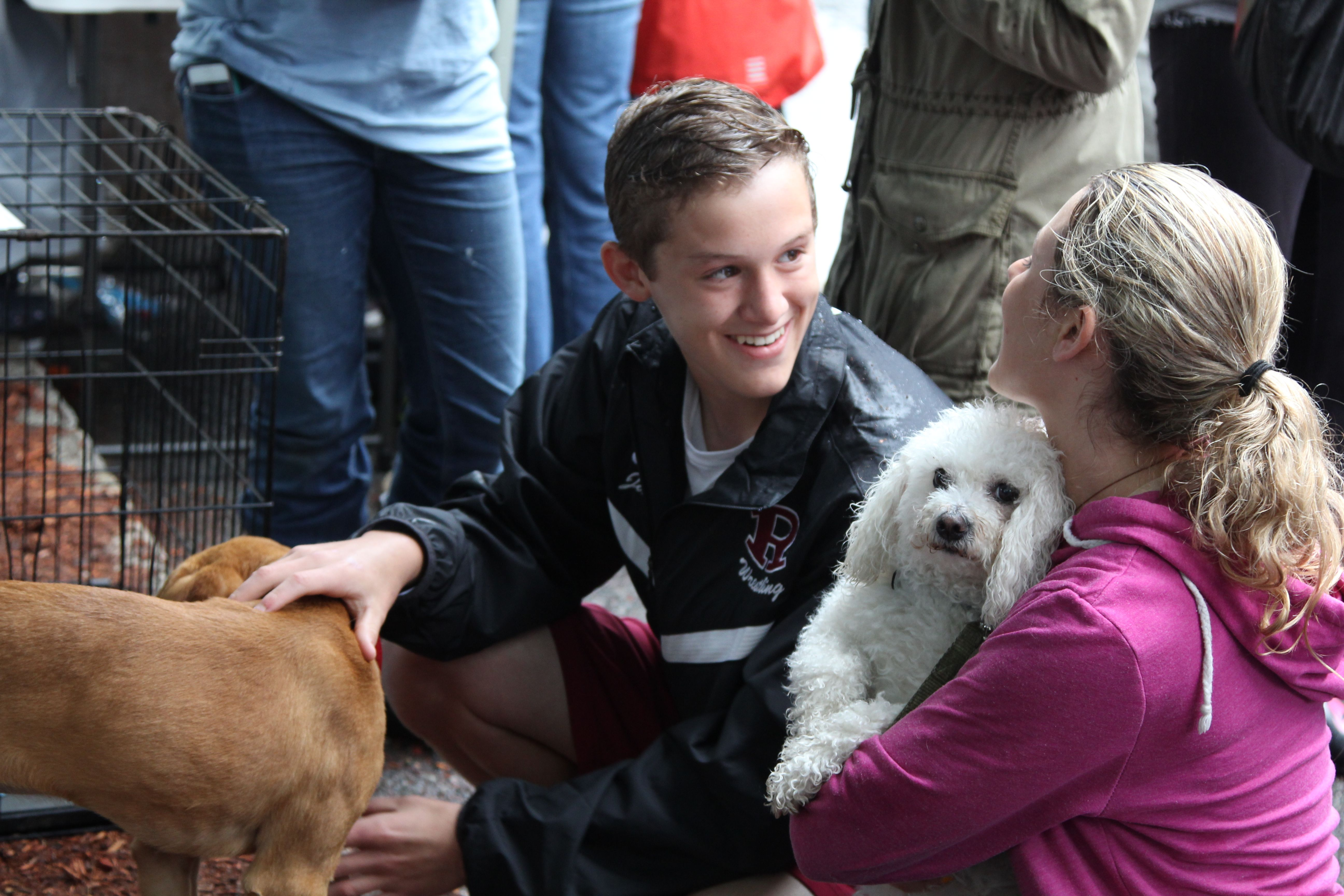 Lots of love for all the animals! Pet day, Veterinary