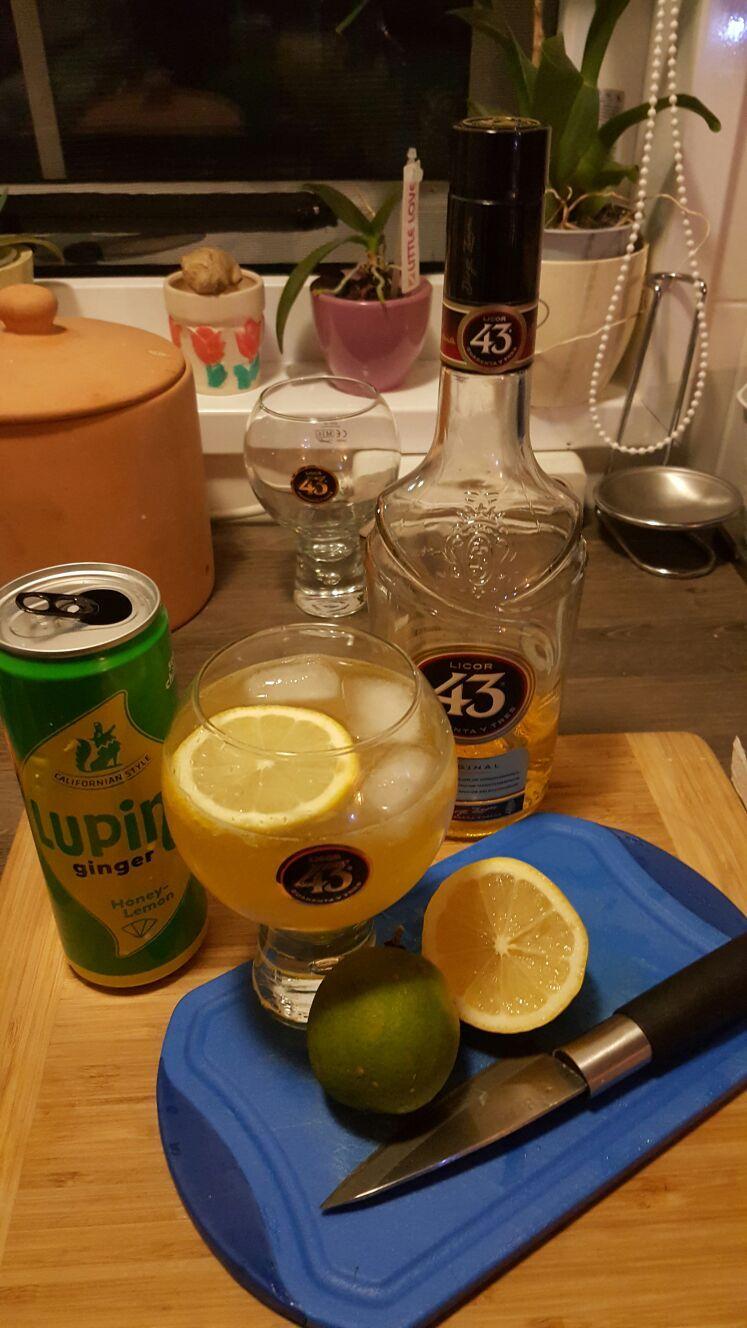 Cocktail Ginger 43 aus Licor43, Ginger-Beer und Zitrone. Ginger-Beer war nicht leicht zu bekommen, aber mit Ginger-Ale schmeckt es leider nicht! Zum Glück bin ich dann doch noch fündig geworden und muss sagen mir schmeckt der Cocktail richtig gut. Ich mag es auch gerne etwas würziger.. Lecker dank dem Testpaket von die Insider mit #Licor43 #dieInsider