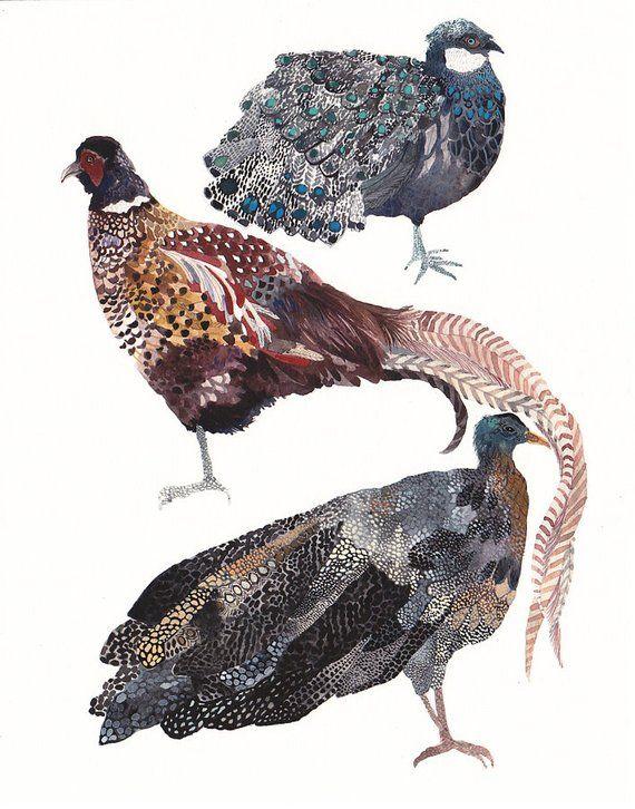 Three Pheasants Stacked Larger Archival Print Etsy Animal Illustration Art Archival Print Pheasant