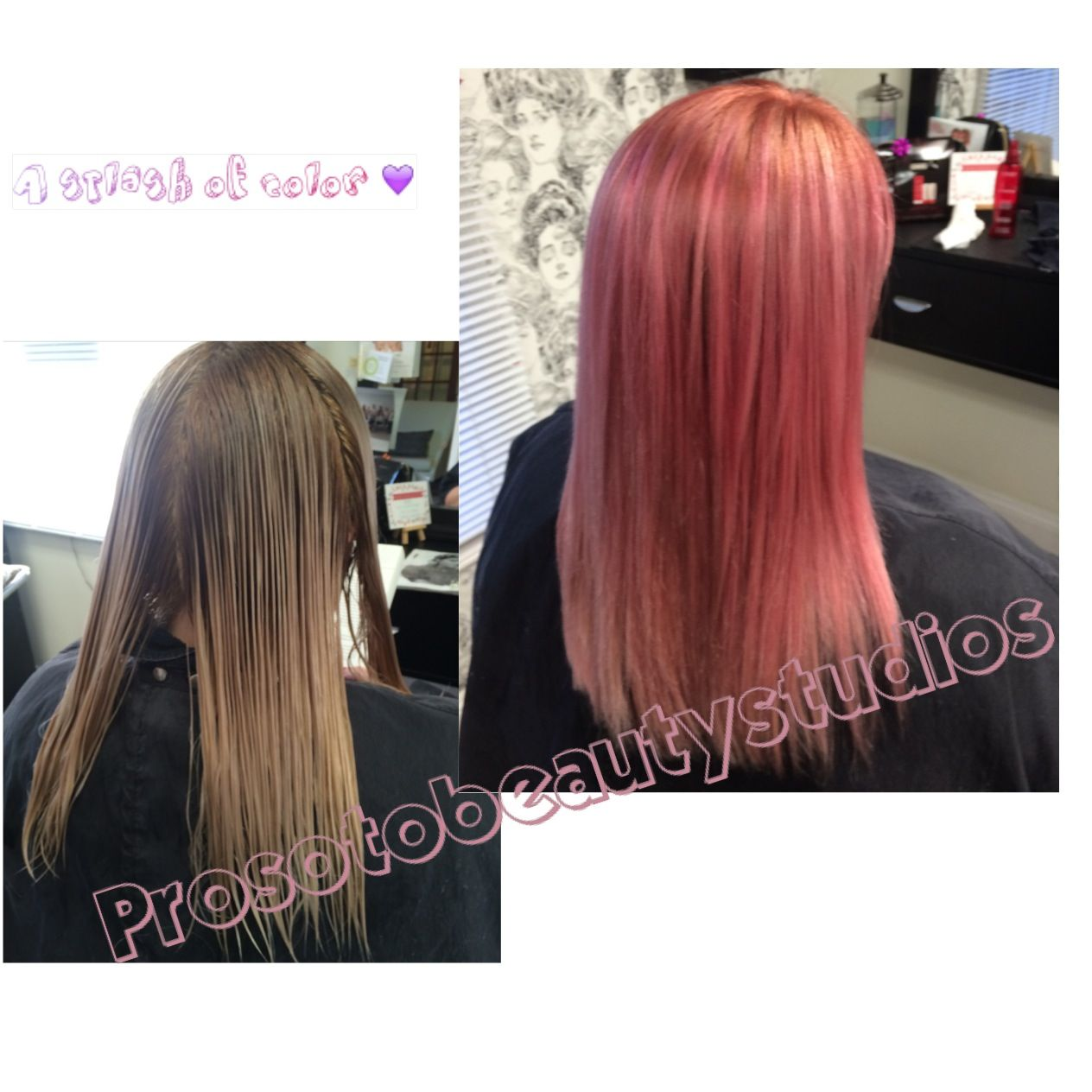 Pink Hair Vibrant Color Lanza Blush Hair Hair Color By Pro