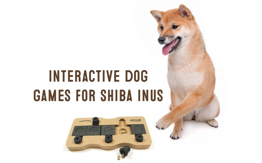Interactive Dog Toys For Shiba Inus