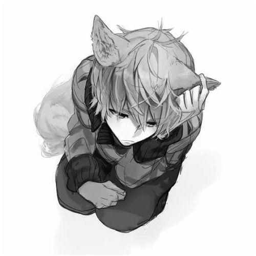 Anime Guy With Wolf Ears And Tail