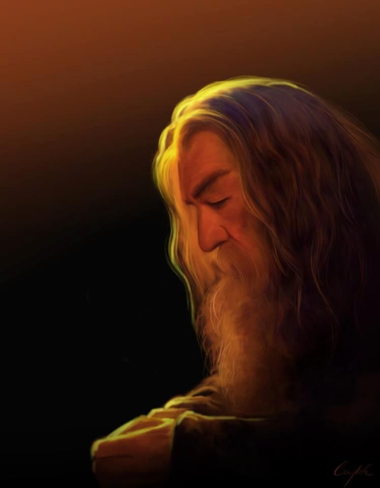 Gandalf the Grey, also known as Mithrandir.