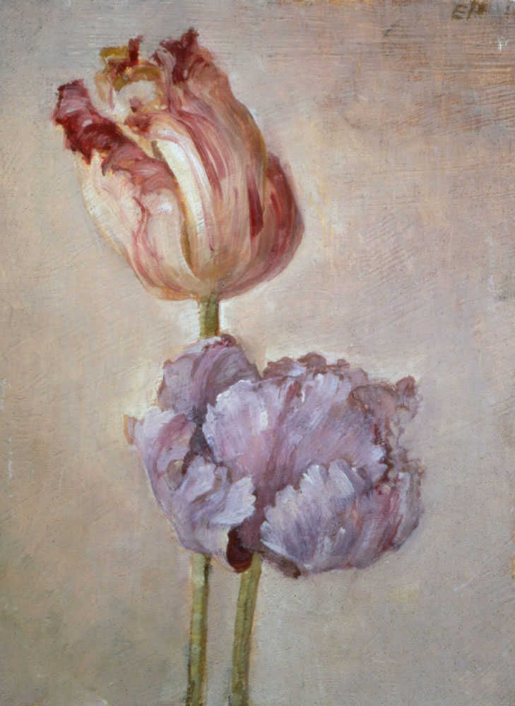 Emily Patrick :: Two small parrot tulips