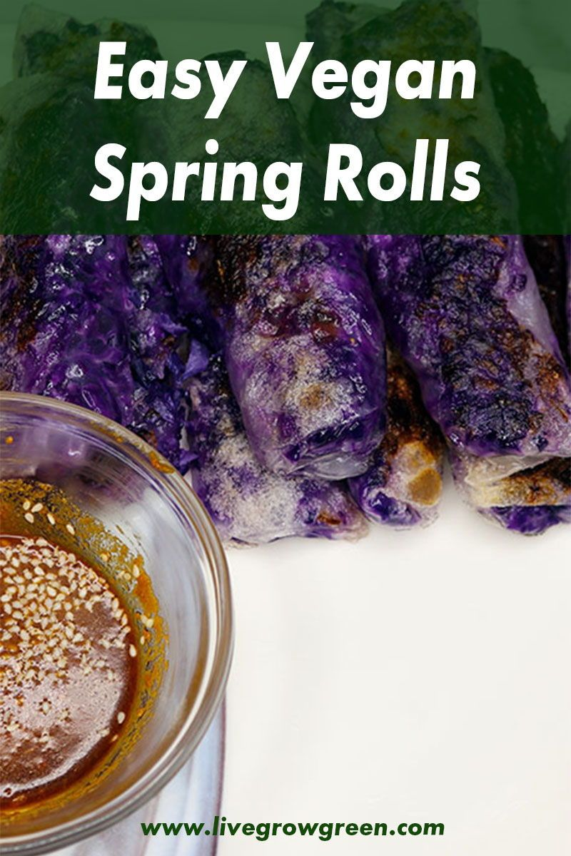Looking for a fun way to get some cabbage into your diet? Check out these super easy to make vegan spring rolls with a sesame peanut dipping sauce. #vegan #plantbased #vegansnacks #veganlunch #springrolls