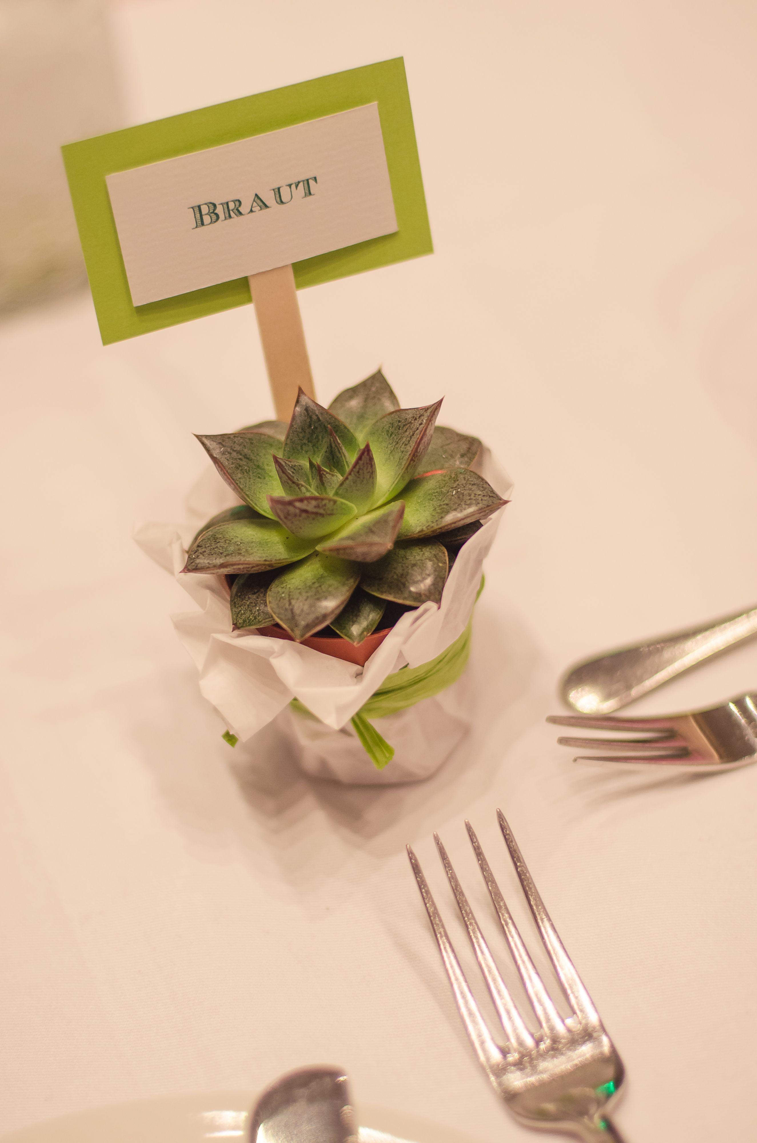 Gastgeschenke Wedding Gifts DIY Sukkulente succulents