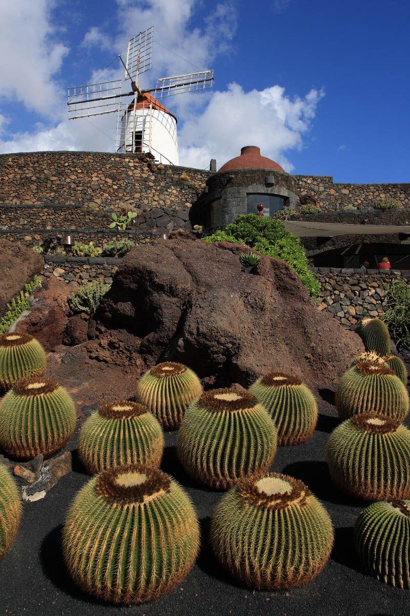 Ferienhaus Lanzarote Jardin de Cactus auf Lanzarote (mit