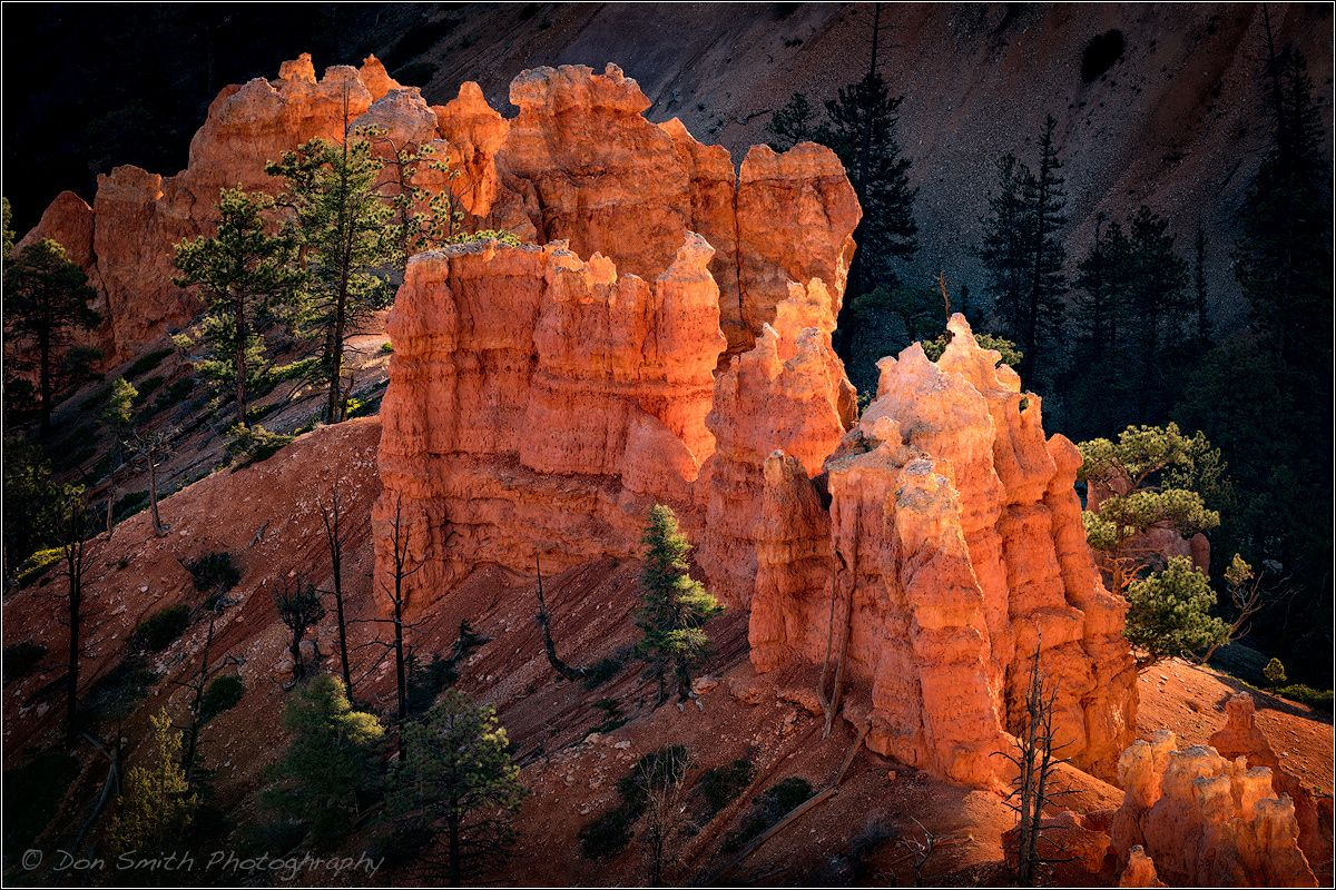 ***Glowing Hoodoos by Don Smith (Bryce Canyon, Utah)