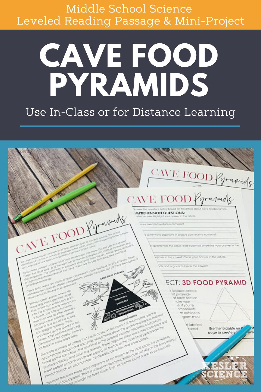 Science Reading Comprehension Cave Food Pyramids Science Reading Comprehension Science Reading Middle School Science [ 1500 x 1000 Pixel ]
