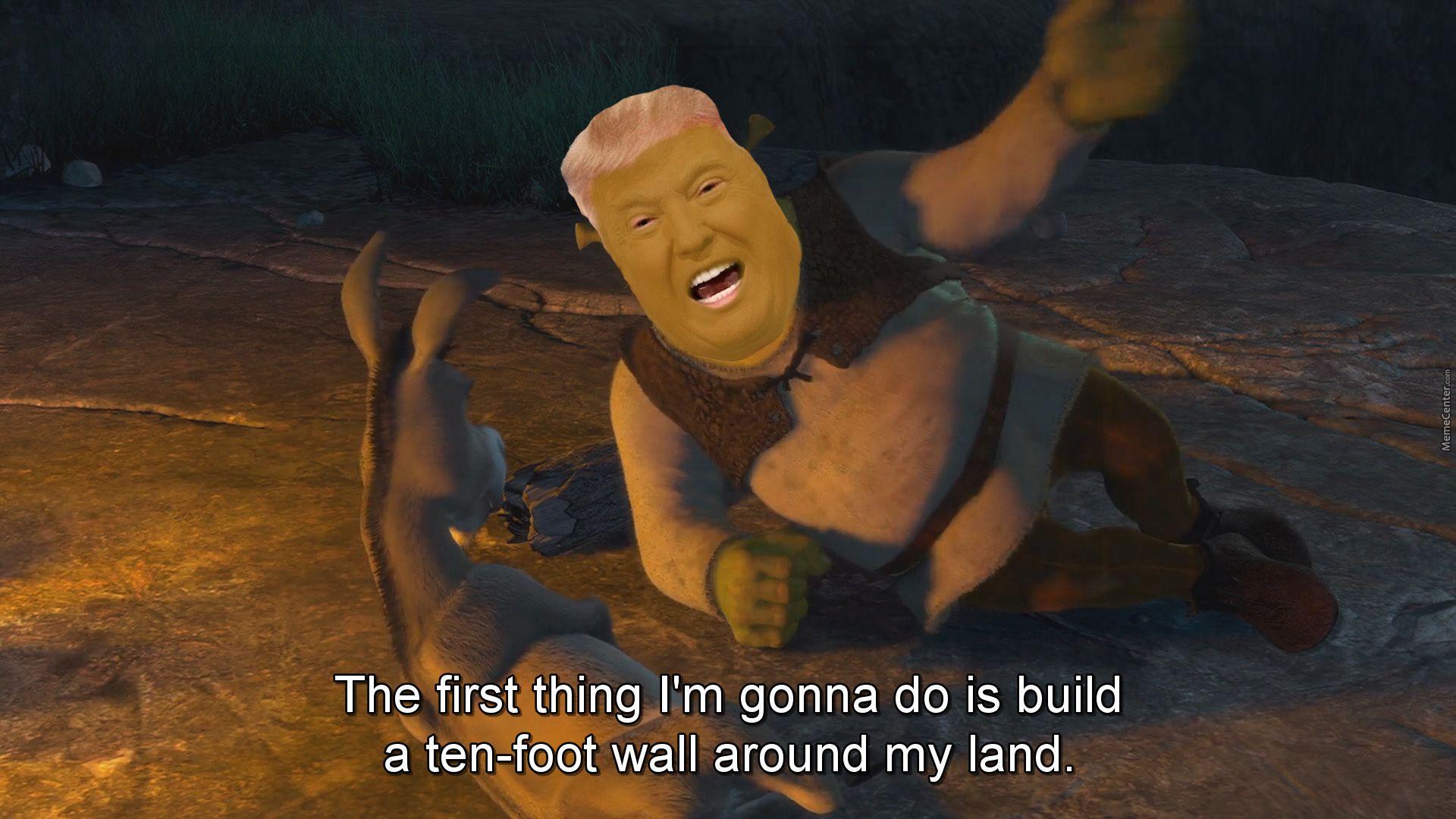 Funny Meme Pages : Image result for shrek memes memes pinterest shrek donald