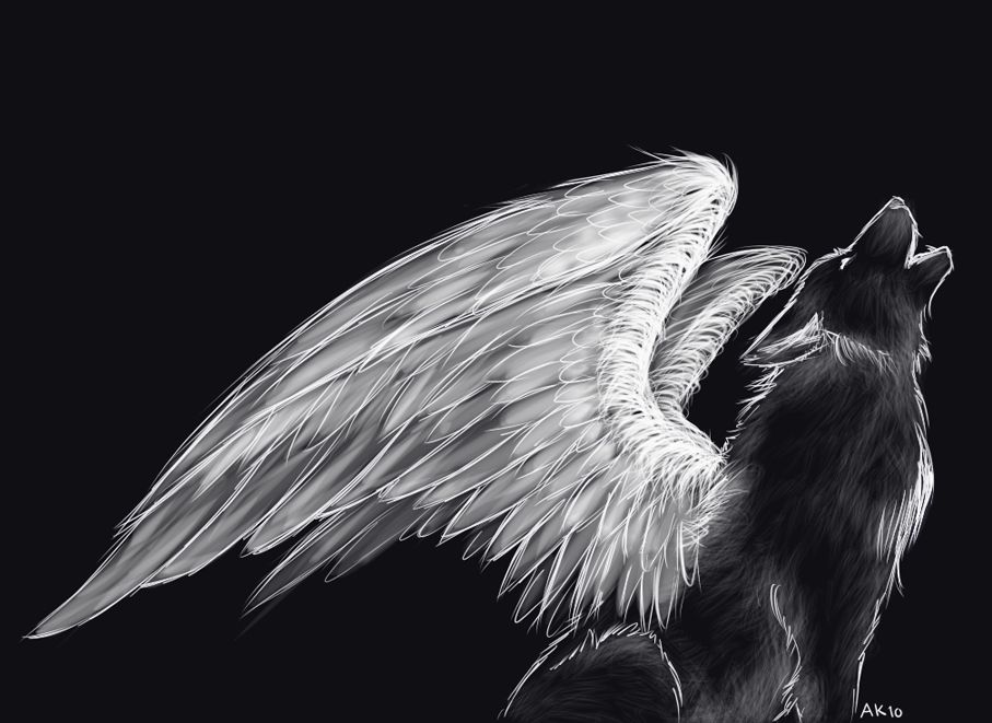 Black Wolf Howling Drawing Black and White...
