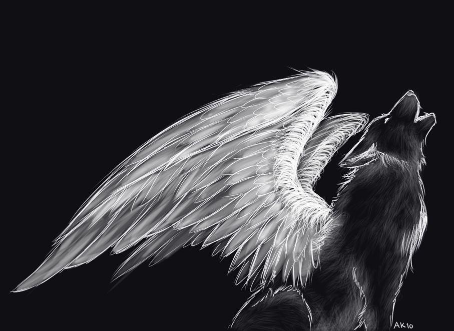 Картинки волками с крыльями, макияж