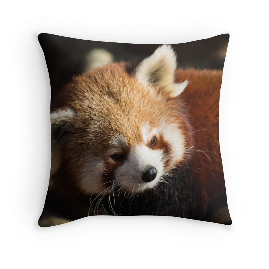 Red Panda Pillow - Red Bubble
