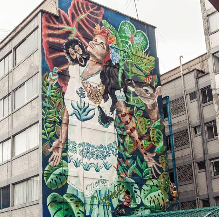 María Antonieta Canfield in Mexico, 2016 | Street art, Art, Mexico