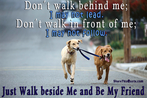 000 Don't walk behind me; I may not lead. Don't walk in front