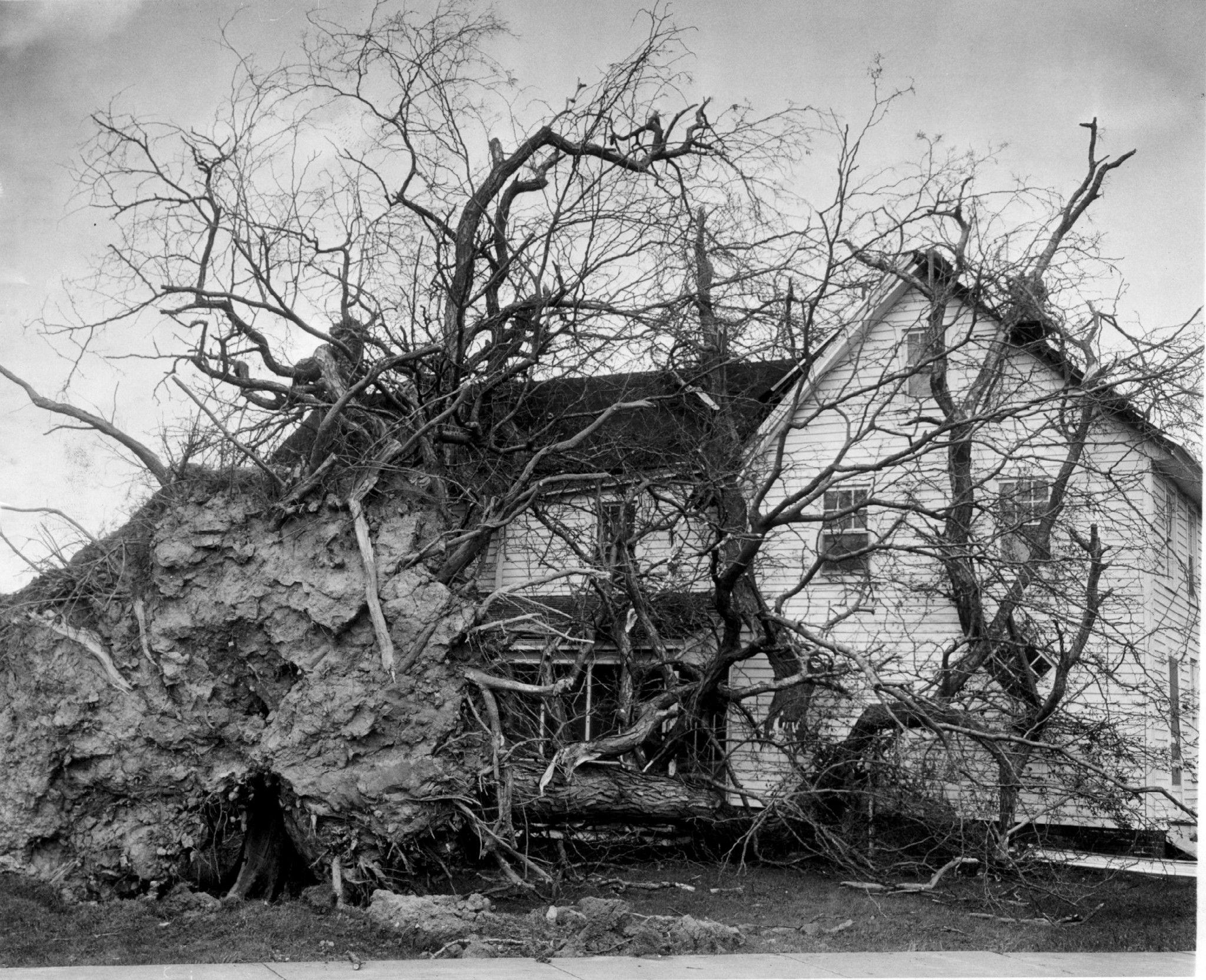 Log In Tumblr Hurricane Hazel Atlantic Hurricane Hurricane Season
