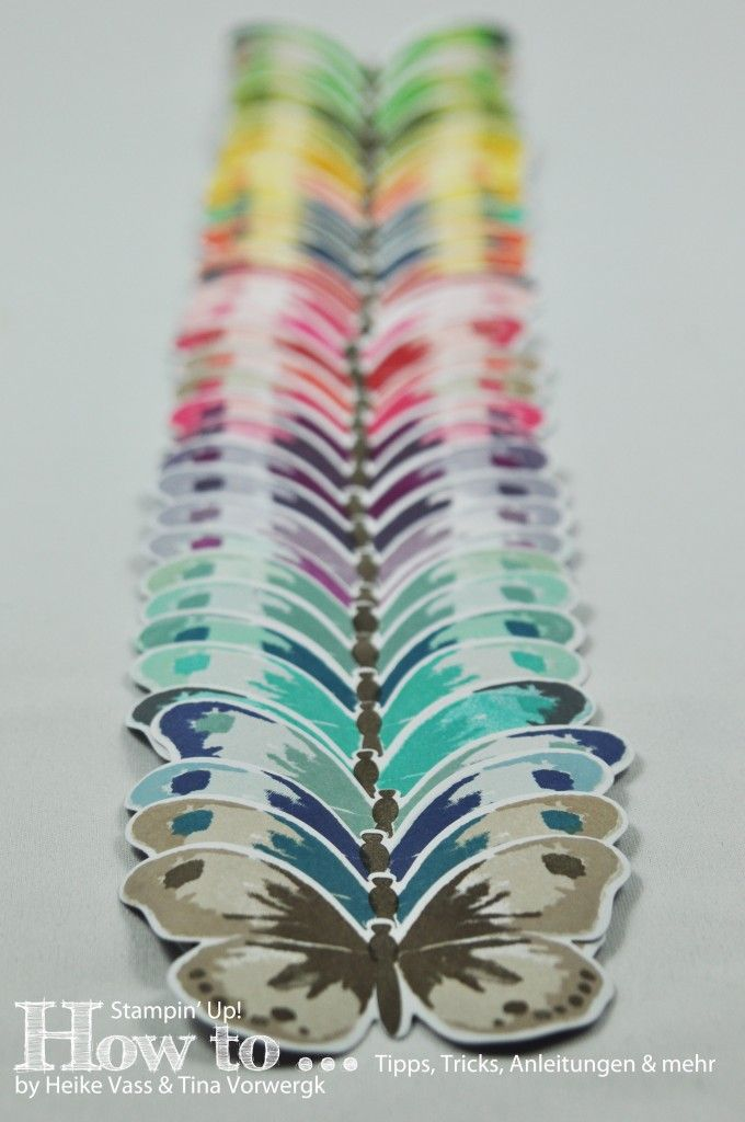 Watercolor Wings 32 color combinations