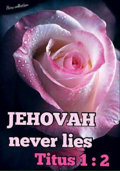 Jehová nunca nos falla,!!