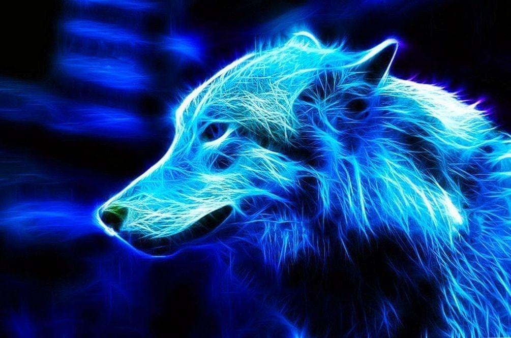 Blue Wolf Wallpapers Blue Wolf Wallpapers Wolf Wallpaper Wolf With Blue Eyes Scary Wallpaper