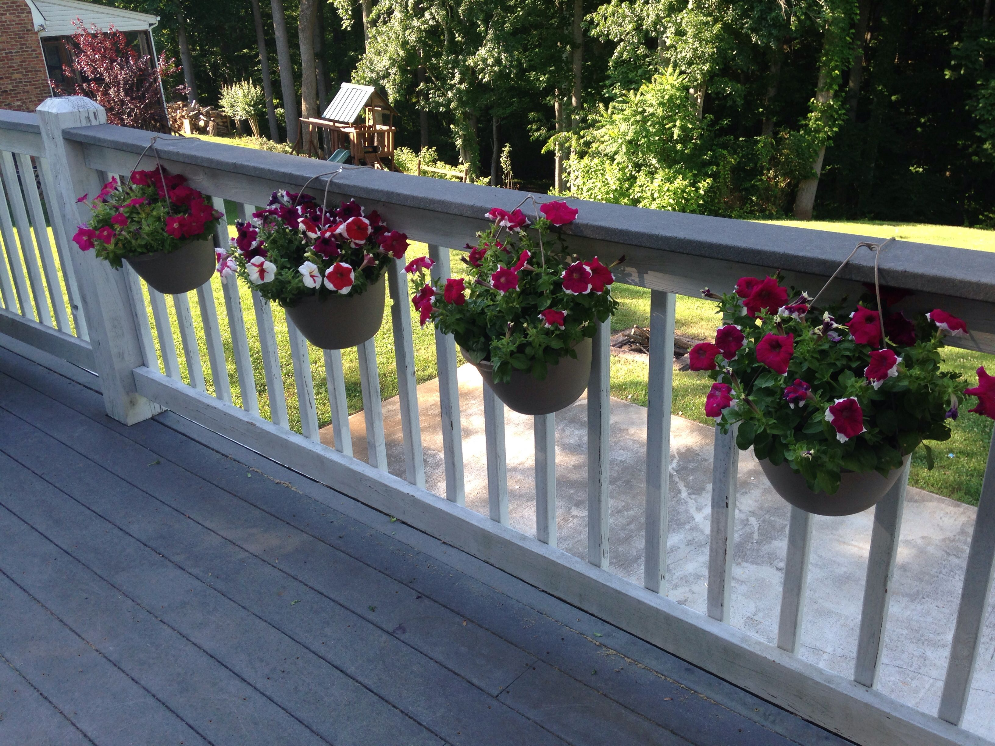deck rail hanging flower pots cut off the hanger opened one of the three hanging attachments. Black Bedroom Furniture Sets. Home Design Ideas