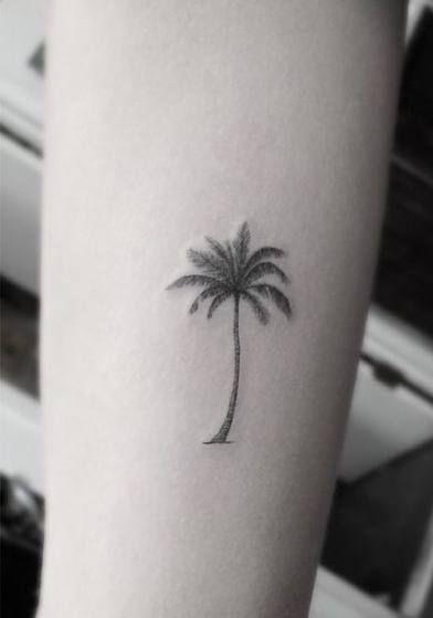 Photo of 69 tatouage palmier à la mode dos dr woo