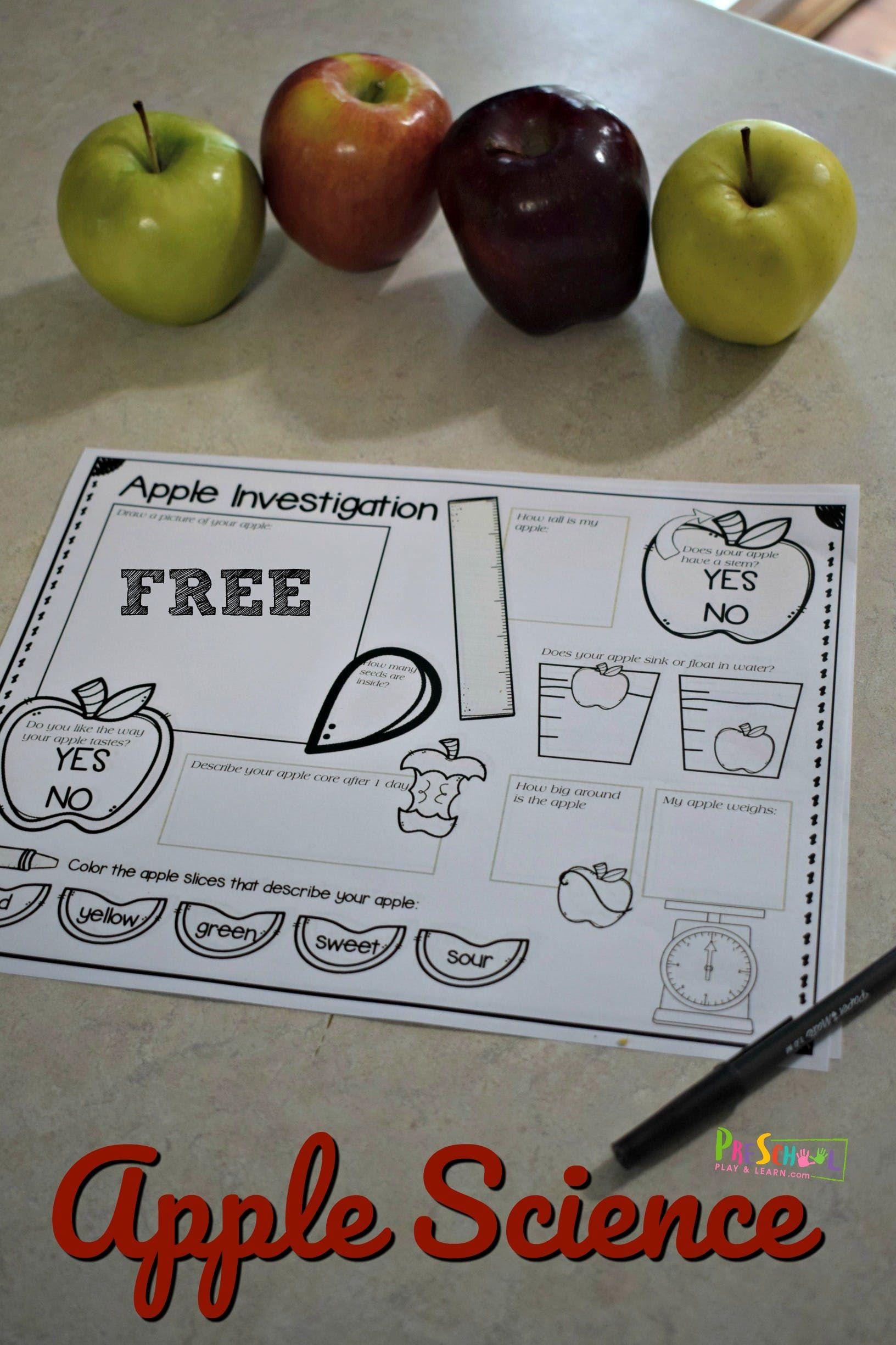Free Apple Science Experiment Worksheet In