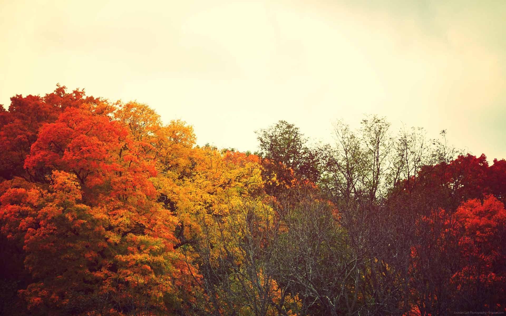 Life Isn T Fair Autumn Tumblr Desktop Wallpaper Fall Fall Tumblr