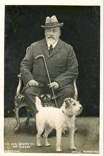 King Edward VII was a great lover of dogs, he kept many as
