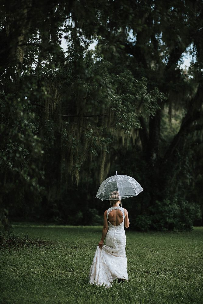 clear umbrella wedding pictures #clearumbrella
