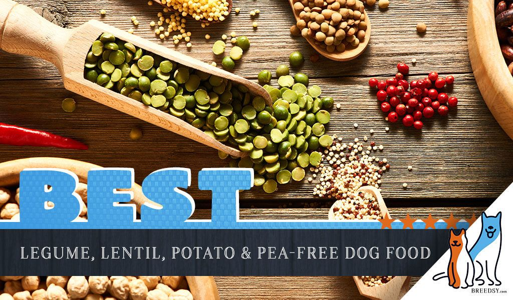 9 Best Healthy Dog Foods Without Peas Lentils Legumes And