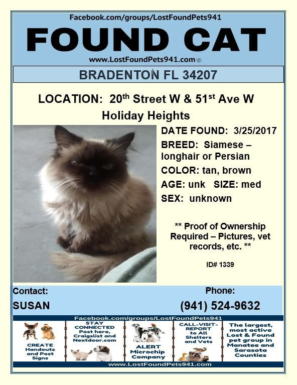 Do You Know Me Lost Cat Persian Siamese Found Lostpetservices Lostfoundpets941 Bradenton Fl Found Cat Manatee County Service Animal