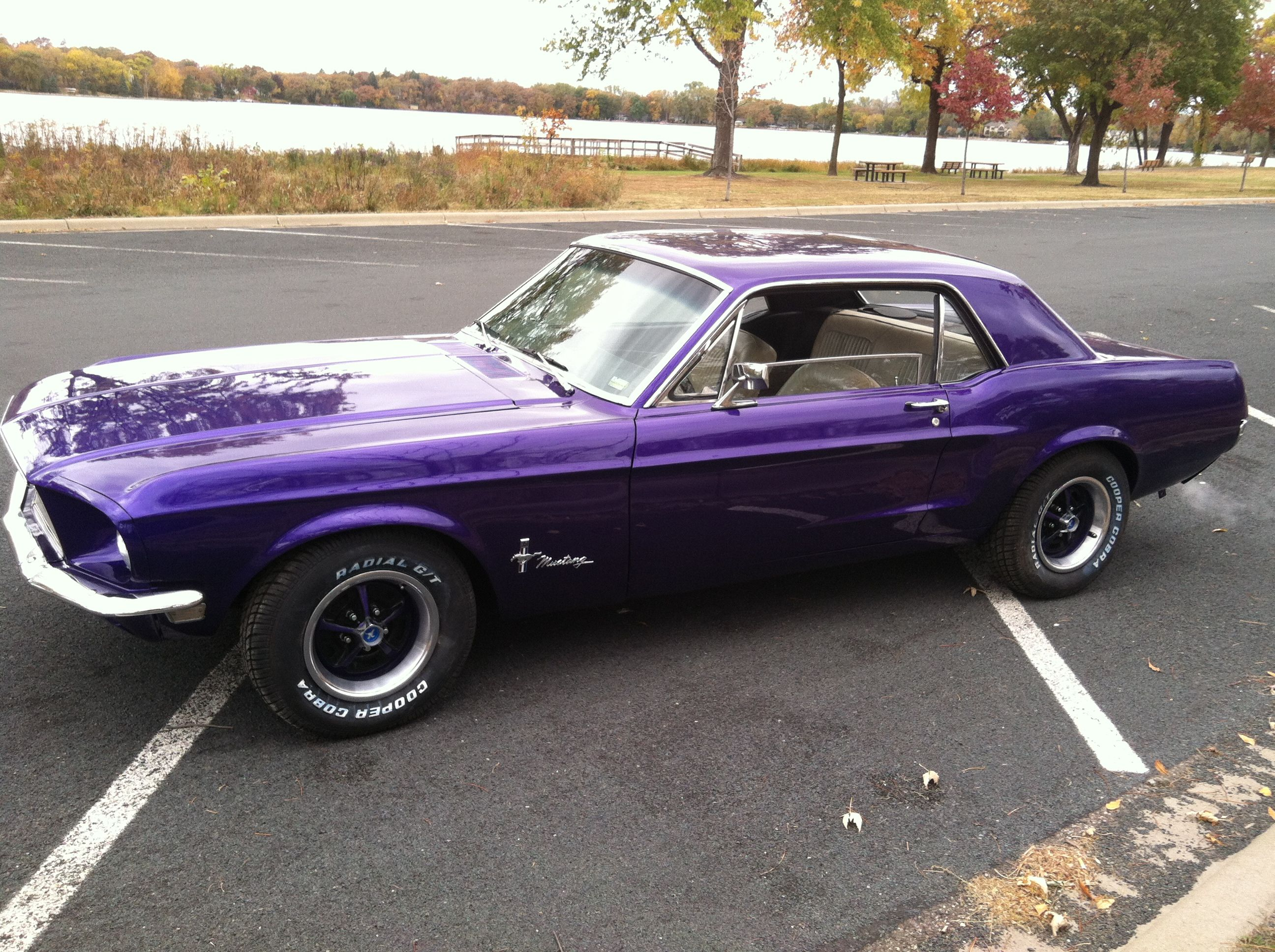 Mustang Coupe Purple Our First Family Car A Stock Purple