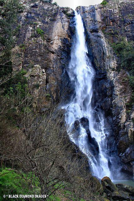 Ellenborough Falls Elands Nsw Waterfall Beautiful Waterfalls Great Lakes