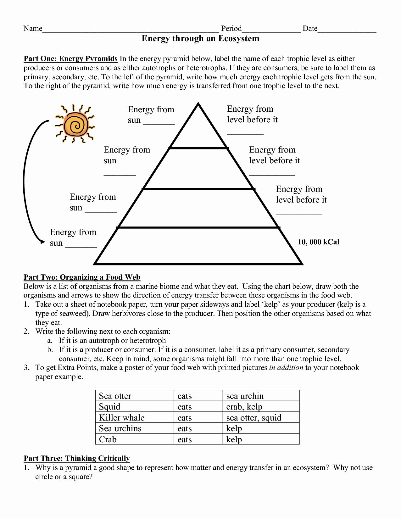 Energy Flow In Ecosystems Worksheet Awesome 8 5b Protons