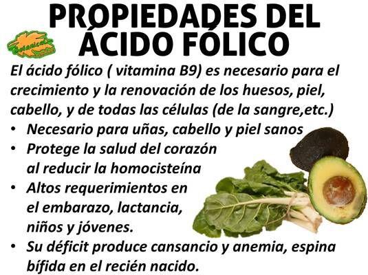 propiedades del acido folico o vitamina b9. Indispensable