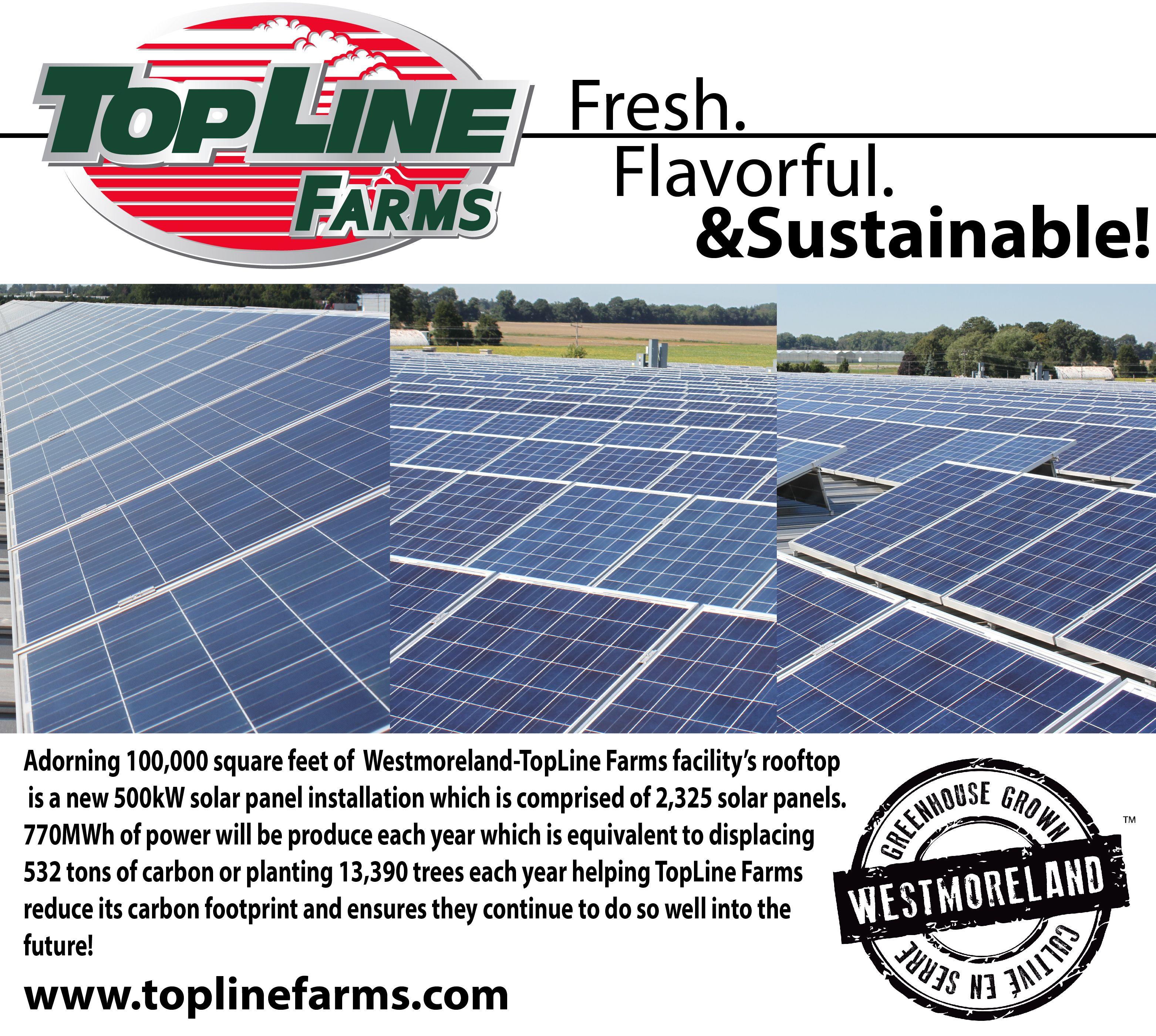 Toplinefarms Fresh Flavorful Sustainable Toplinefarms Reducing Their Carbonfootprint Well Into The Future Roof Solar Panel Solar Solar Panels