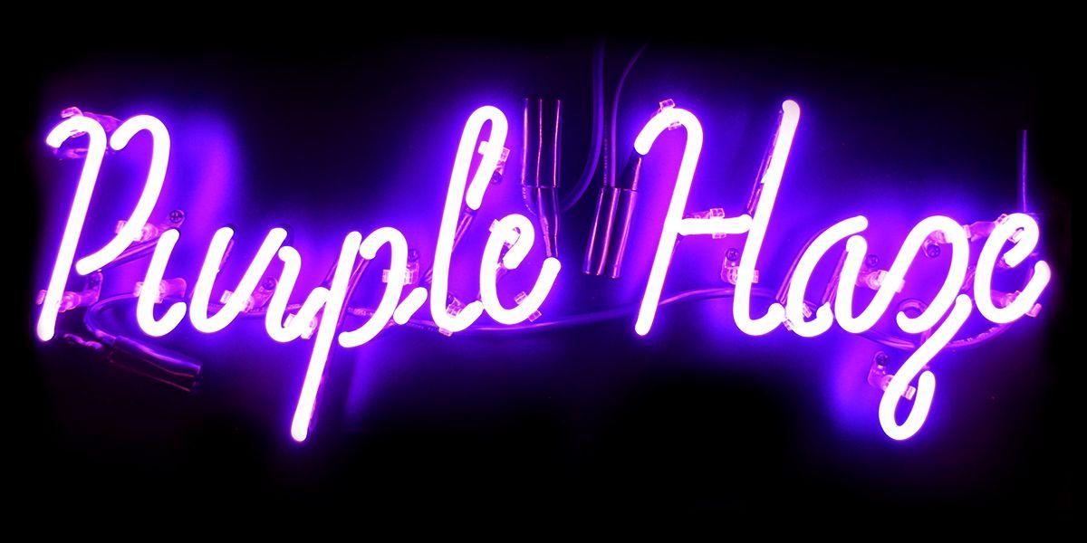 Purple Haze neon sign. Neon signs, Neon, Custom neon signs