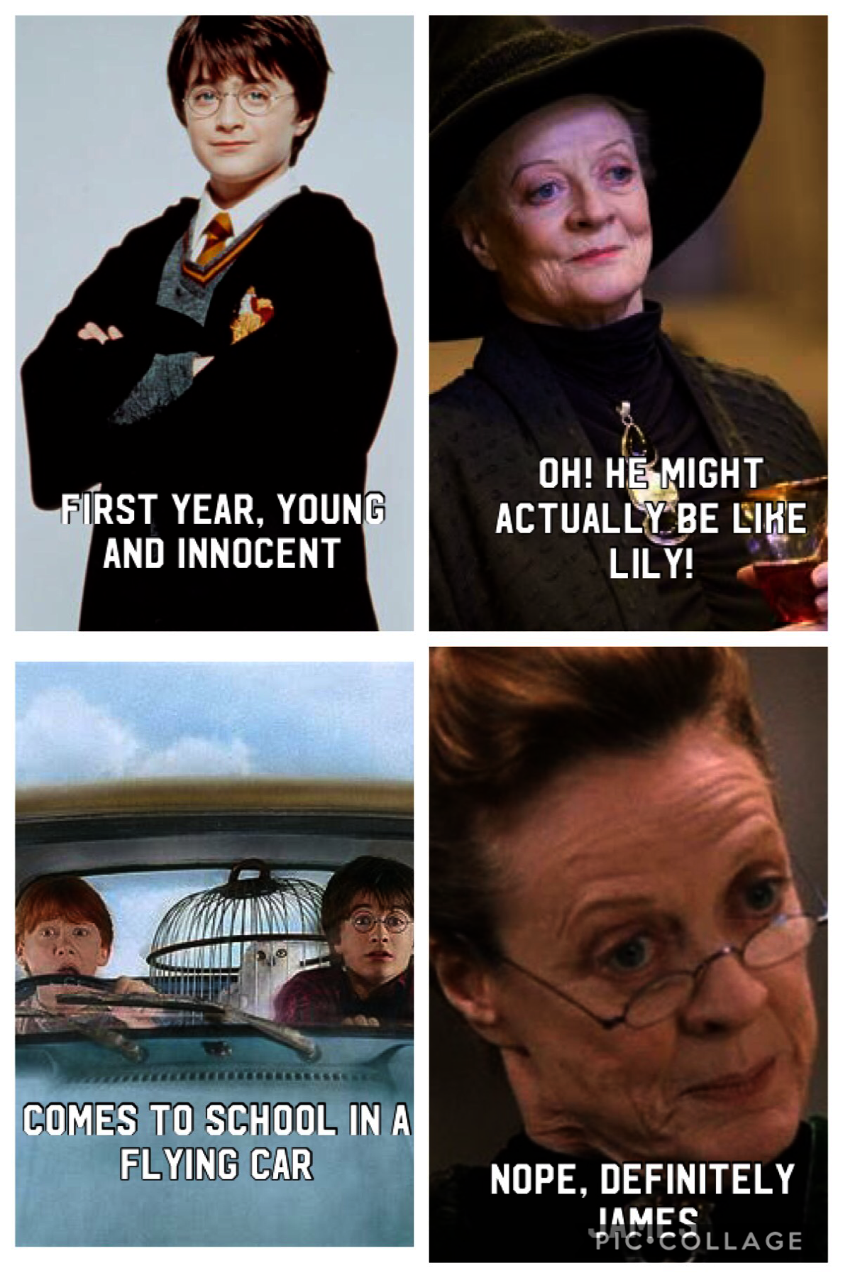 Harry Potter Movies In Order Free Harry Potter World Resort That Harry Potter Spells Puns Harry Potter Universal Harry Potter Puns Harry Potter Memes
