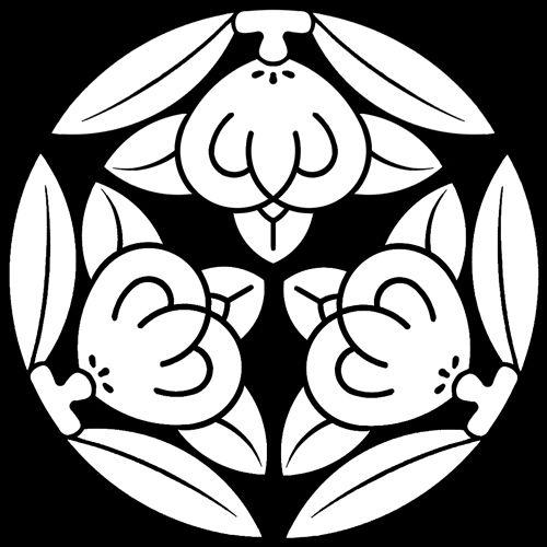 三つ橘 みつたちばな Mitsu Tachibana The Design Of 3 Tachibana