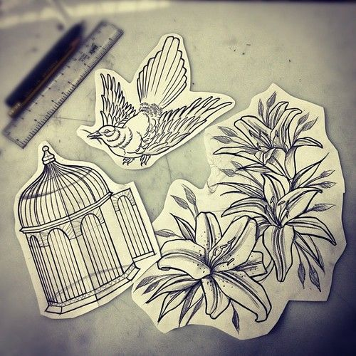 lukethompsonart:    Bird and his cage and lily flowers