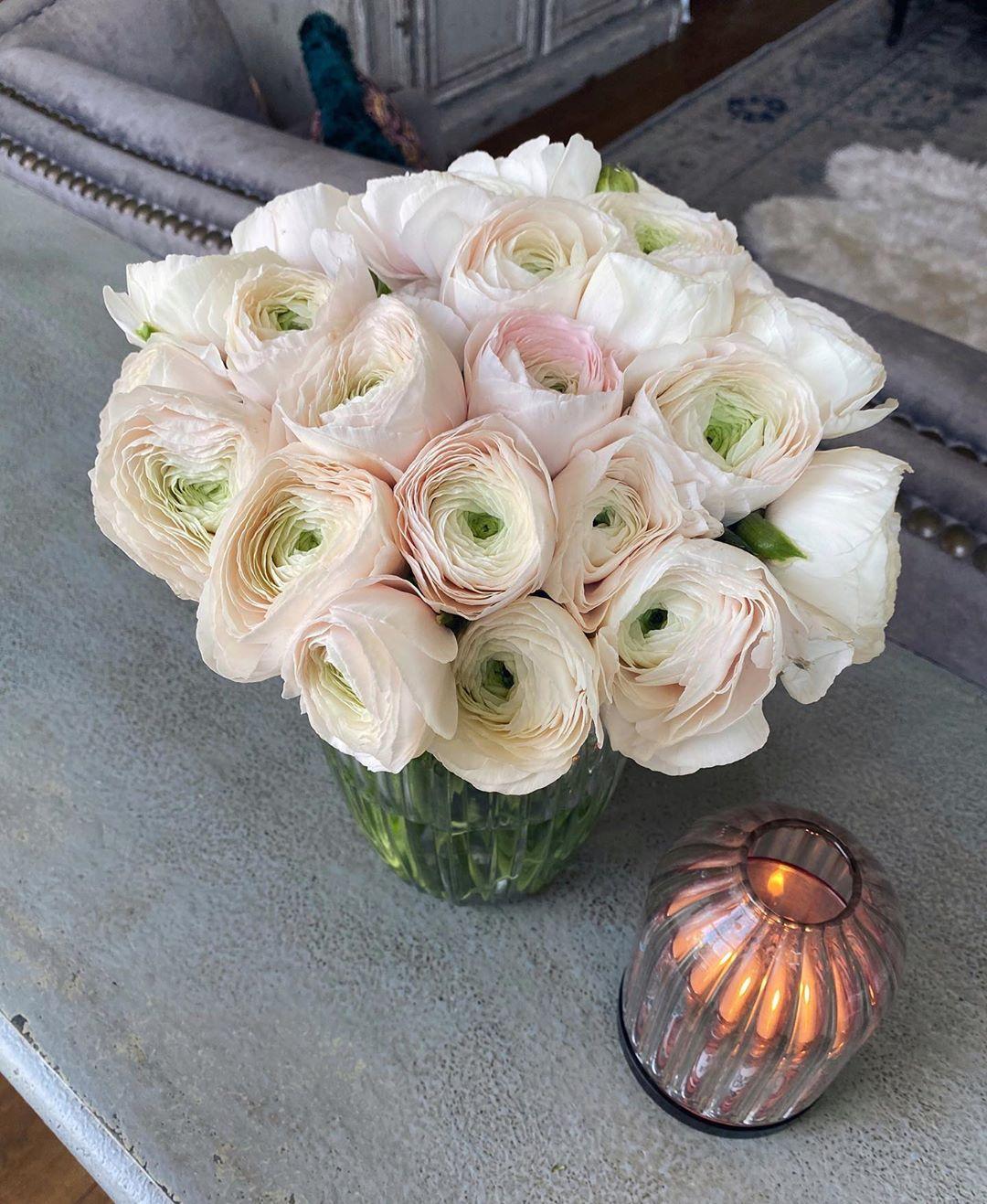 Do Ranunculus Flower Every Year
