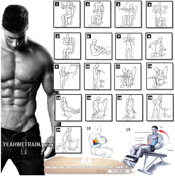 skinny guy workout plan bodybuilding routine pdf