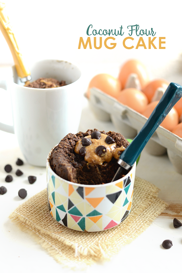 Low Carb Chocolate Cake In A Cup