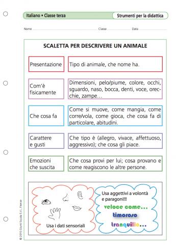 Scaletta per descrivere un animale - La Vita Scolastica